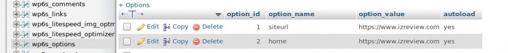 Modify WordPress Database to Transfer